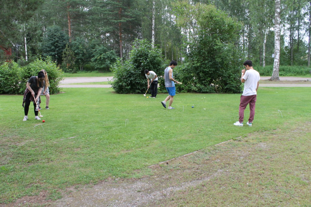 Croquet play in action